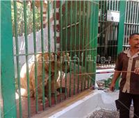 تسلق الأقفاص واللعب مع القرود.. أبرز تحذيرات حديقة الحيوان للزائرين