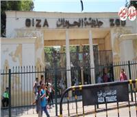 إقبال محدود على المتنزهات والحدائق العامة في أول أيام عيد الأضحى المبارك
