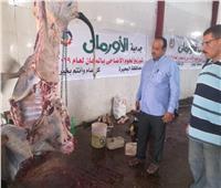 «أضحيتك فرحة».. مبادرة لتوزيع اللحوم على الأسر الأكثر احتياجًا بالبحيرة