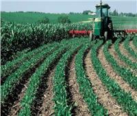 مشاكل بالجملة فى القطاع الزراعي بالإسماعيلية