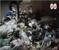 فيديو| القمامة تتراكم أمام الوحدة المحلية بساقية أبو شعرة في المنوفية