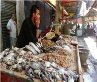 «أسعار الأسماك» في سوق العبور السبت 17 أغسطس