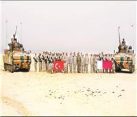 التوغل التركي في قطر «مستمر» منذ الأزمة الخليجية