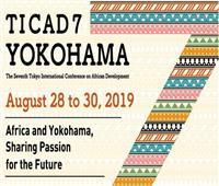 بتنسيق مصري ياباني| «تيكاد7» ..خطوة جديدة لتعزيز التعاون بين أفريقيا وطوكيو