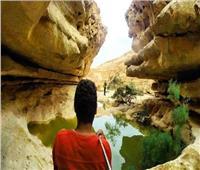 غدا.. «البيئة» تنظم مهرجان الطبيعة والثقافات المحلية بمحمية وادي دجلة