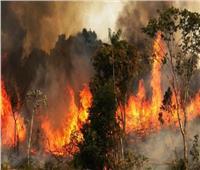 رئيس البرازيل يتهم المنظمات الأهلية بإحراق «الأمازون»