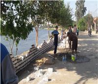 نائب محافظ القليوبية تطلق حملة «تجميل القرى».. والشباب يبدأون التنفيذ