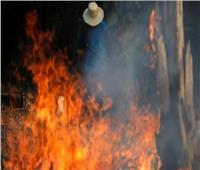 خاص| البيئة: مصر لن تتأثر بحرائق الأمازون
