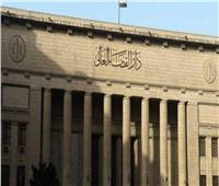 """الأحد.. محاكمة 5 متهمين بـ """"خلية الوراق الإرهابية"""""""