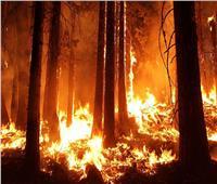 هل «رئة الأرض» وحدها التي تحترق أم العالم يتحول لـ«حفل شواء»؟