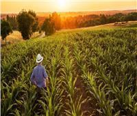 بعد حريق غابات الأمازون.. تعرف على تأثير المناخ والحرائق على المحاصيل الزراعية