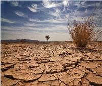فيديو| دبلوماسي سابق: إفريقيا المتضرر الأكبر من آثار تغير المناخ