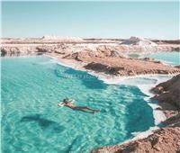 صور| «طوق النجاة» يصـل بحيرات مصر