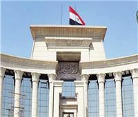 نظر عدم دستورية مادتين بقانون المحاماة في 2 نوفمبر المقبل
