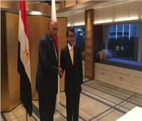شكري يبحث مع نظيره الياباني تعزيز العلاقات الثنائية وعددًا من القضايا الإقليمية والدولية