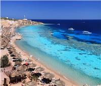 اجتماع لـ«الغرف السياحية» لمناقشة «زيادة رسوم الشواطئ» الأسبوع المقبل