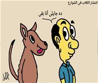 إبداعات القراء | «كاريكاتير»... «انتشار الكلاب الضالة»