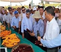 وزير الزراعة يتفقد البرامج القومية للأصناف الجديدة من المحاصيل بمحطة بحوث سخا