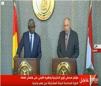 فيديو| سامح شكري: علاقة مصر وغينيا ممتدة منذ سنوات التحرر الإفريقي