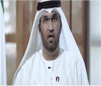 وزير الدولة بالإمارات: التحالف العربي حجر أساس استقرار المنطقة