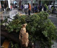 بسبب إعصار«لينغ لينغ».. تضرر 455 ألف شخص و131 مليون دولار خسائر