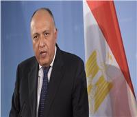 شكري: تنفيذ المسار السياسي في سوريا سيعزز مشاورات عودتها إلى الجامعة العربية