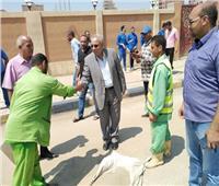 حملات مكثفة للتجميل والنظافة بشوارع ملوي بالمنيا