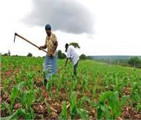 رواندا تستضيف منتدى الثورة الخضراء الأفريقية العام المقبل