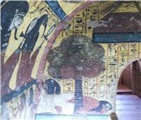 «البلح» صمام الأمان والغذاء الصحي لبُناة الأهرامات.. تعرف على فوائده