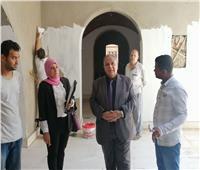 قصر ثقافة «توشكى» يستقبل الجمهور قبل نهاية 2019