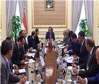رئيس الوزراء يُتابع توصيل المرافق للمناطق الصناعية والحرة بالمنيا
