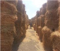 البيئة في مواجهة السحابة السوداء..تجميع 48780  طن مخلفات زراعية