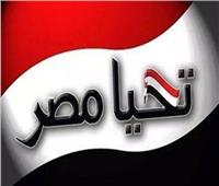 فيديو| مقاولو «البناء والتشييد» يتبرعون لصندوق «تحيا مصر»
