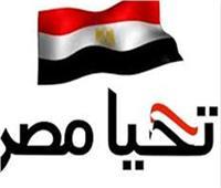 فيديو| في مبادرة «رد الجميل».. قطاع البناء يتبرع لصندوق «تحيا مصر»