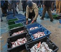 هل يجوز صيد الأسماك بالصعق الكهربائي؟.. «الإفتاء» تجيب