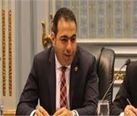 وكيل شباب البرلمان: وثيقة القاهرة للمواطنة «متفردة» وتنقذ العالم من الإرهاب