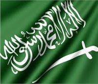 السعودية والبرازيل يبحثان التعاون الثنائي في عدة مجالات
