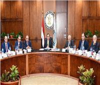 وزير البترول: دعم الرئيس السيسى ساهم في بلوغ نتائج متميزة لصناعة الغاز
