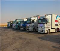 الهلال الأحمر المصري يقدم مساعدات 587 طن مواد غذائية لدولة السودان