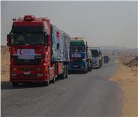 الهلال الأحمر المصري يقدم 587 طن مساعدات مواد غذائية لدولة السودان