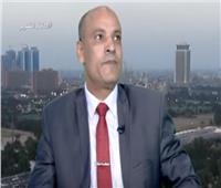 باحث: المشروع التركي الإيراني يضغط على مصر حتى لا تعارض جماعات الإرهاب