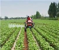 فيديو| «التنمية الزراعية»: مشروع الـ1.5 مليون فدان بدأ مرحلة التصدير