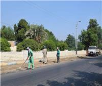 رفع 390 طن قمامة ومخلفات صلبة بمحافظة المنيا