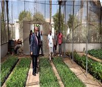 وزير الزراعة يتفقد معمل تشخيص الأمراض النباتية بمركز البحوث