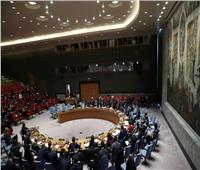 الحرب في سوريا  اجتماع لمجلس الأمن الدولي لبحث الغزو التركي لشمال شرق سوريا.. غدًا