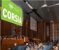 «حماية البيئة في مجال الطيران».. ضمن أولويات الجمعية الـ 40 للإيكاو