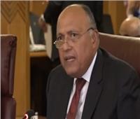 سامح شكري: لدينا مطالبات بعودة سوريا للجامعة العربية