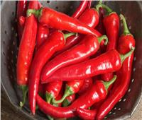 5 فوائد لـ« الفلفل الأحمر الحار» .. أبرزها إنقاص الوزن