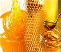 الأربعاء.. افتتاح أول مهرجان لعسل النحل المصري