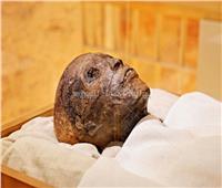 حواس: نقل تابوت «توت عنخ آمون» للمتحف الكبير لإنقاذه.. فيديو